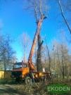 obcinanie-drzew
